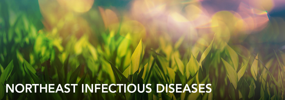 banner-practice-northeast-infectious-diseases