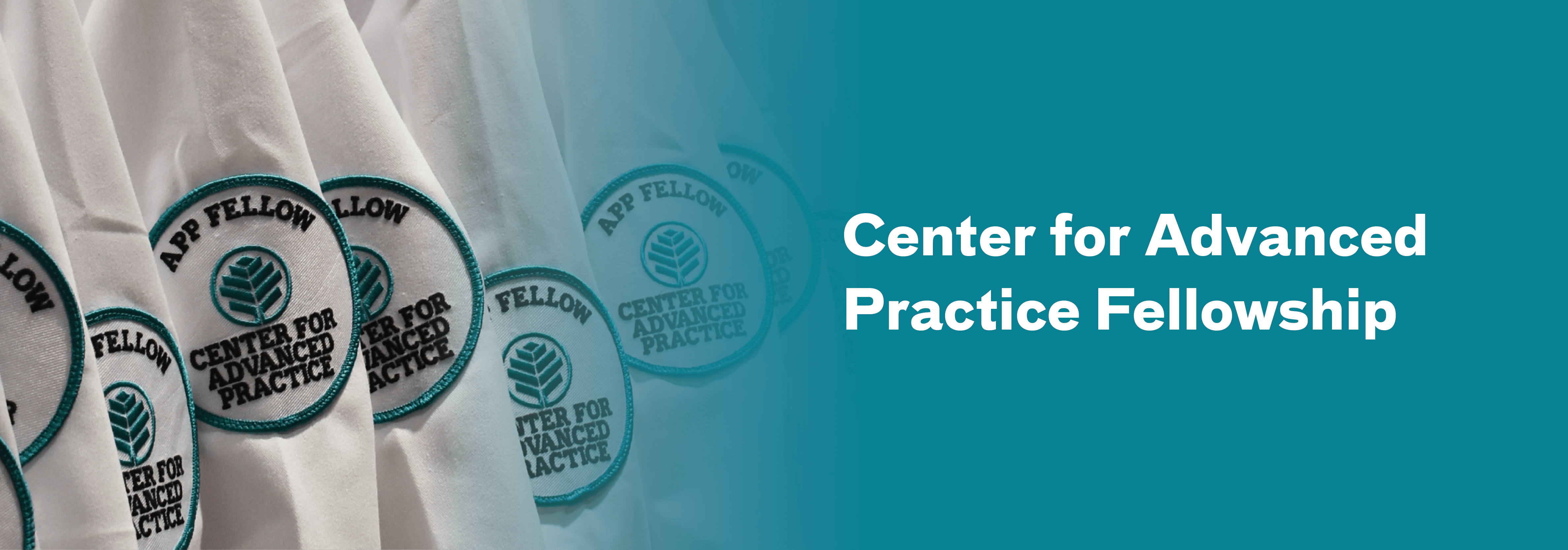 Center for Advanced Practice Fellowship