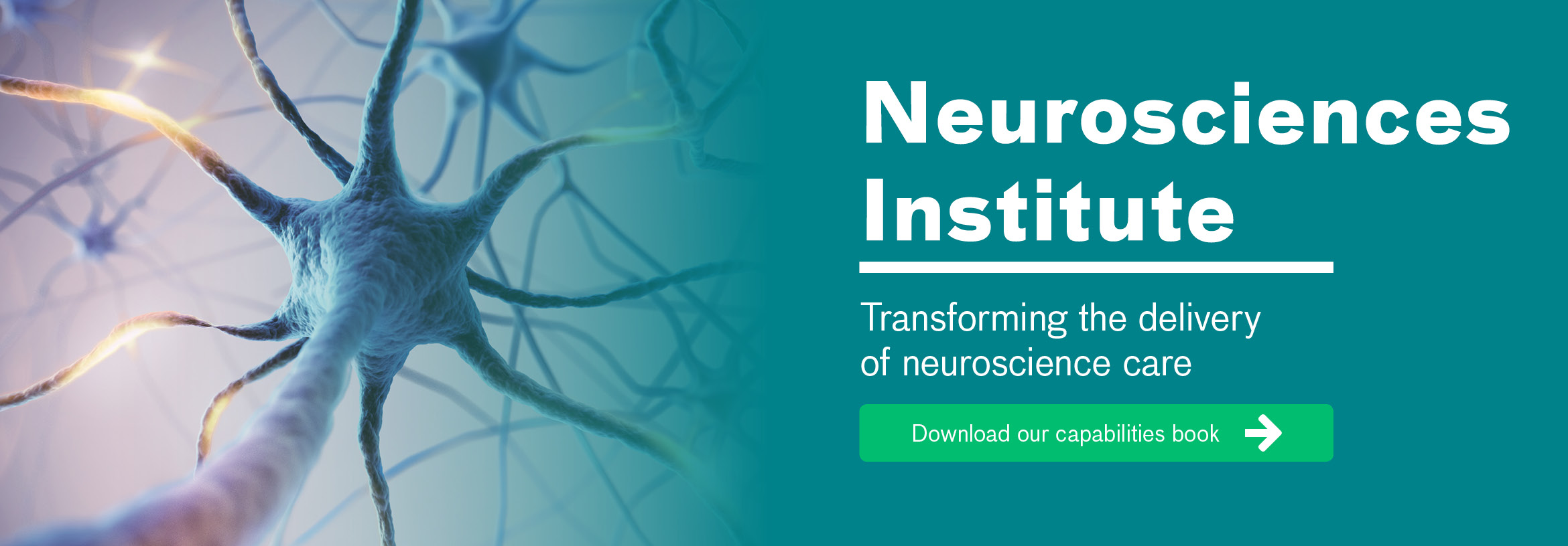 Neuroscience Experts | Neurosciences Institute