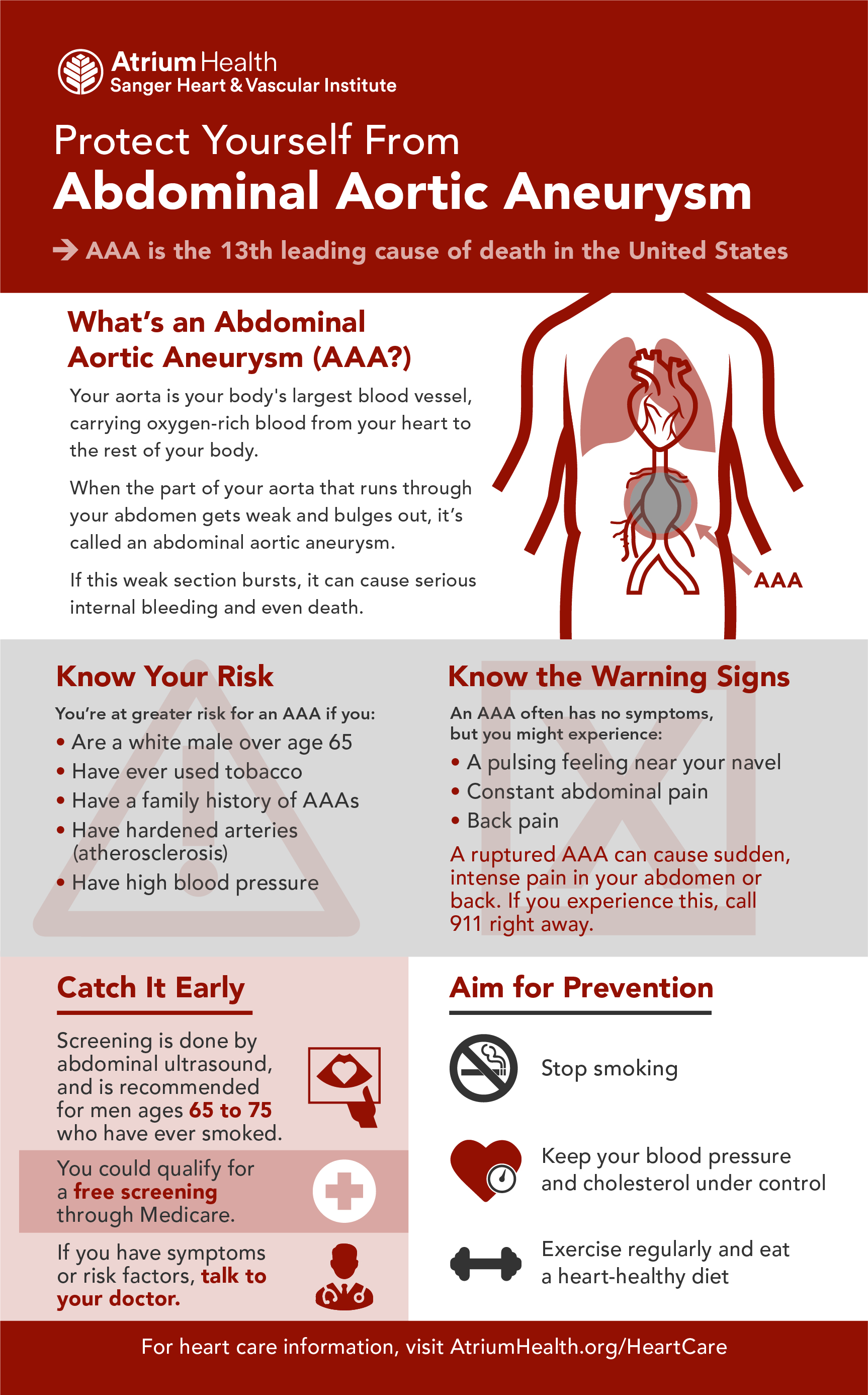 Abdominal aortic aneurysm infographic